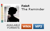New mp3 download option for the Feist album