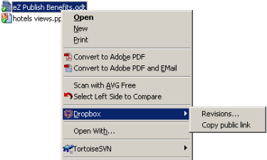 Get a link for a file in the Public folder